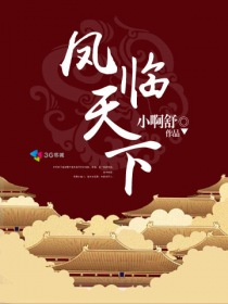 凤临天下小说封面