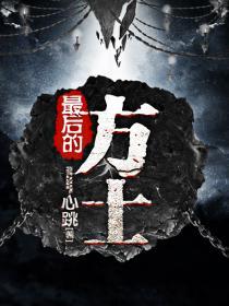 最后的方士小说封面