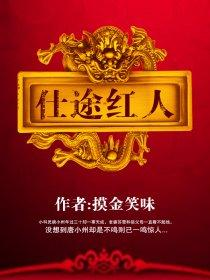 仕途红人小说封面