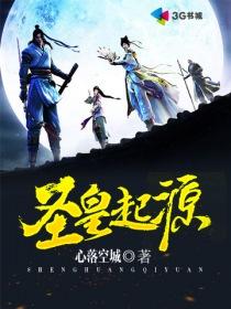 圣皇起源小说封面