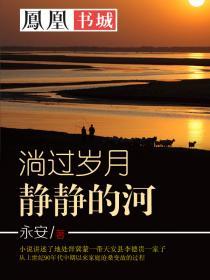 淌过岁月静静的河小说封面