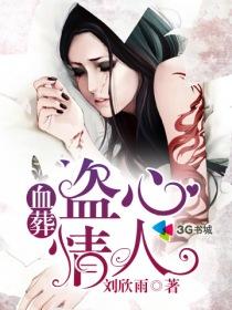 血葬:盗心情人小说封面