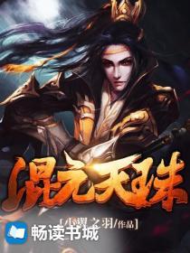 混元天珠小说封面