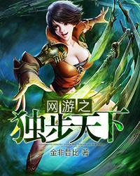 网游之独步天下小说封面