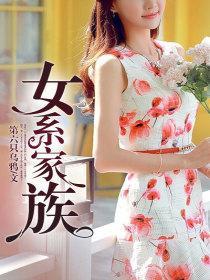 女系家族小说封面