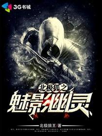 北极狐之魅影幽灵小说封面
