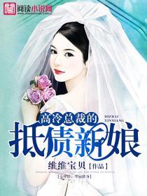高冷总裁的抵债新娘小说封面