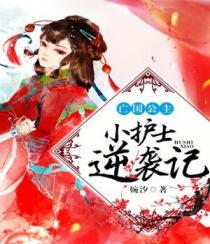 书名:亡国公主:小护士逆袭记小说封面