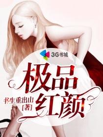 极品红颜小说封面