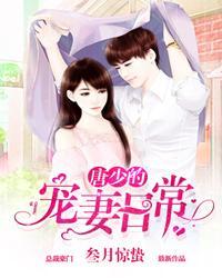 唐少的宠妻日常小说封面