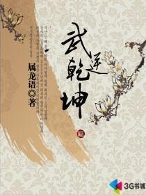 武逆乾坤小说封面