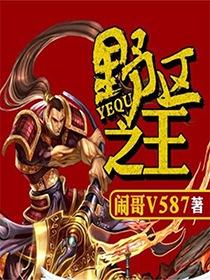 野区之王小说封面