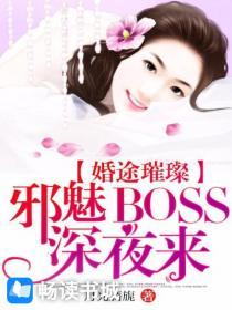婚途璀璨:邪魅BOSS深夜来小说封面