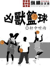 凶兽篮球小说封面
