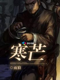 寒芒小说封面