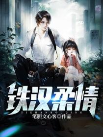 鐵漢柔情小說封面