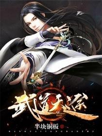 武道天途小說封面