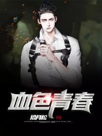 血色青春小说封面