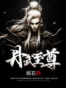 丹武至尊小说封面