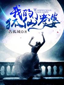 我的狐仙小老婆小说封面