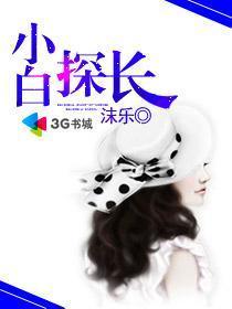 小白探長小說封面