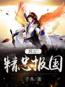 风云:精忠报国小说封面