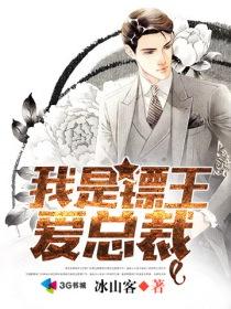 我是镖王爱总裁小说封面