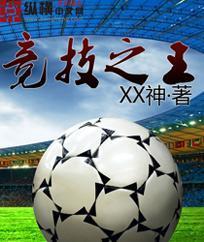 竞技之王小说封面