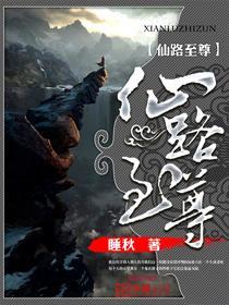 仙路至尊小说封面