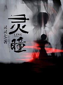 灵瞳小说封面