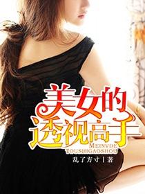 美女的透视高手小说封面