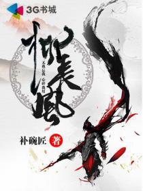 柳长风小说封面
