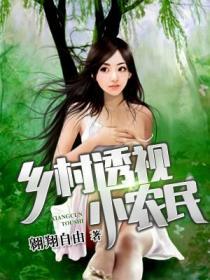 乡村透视小农民小说封面