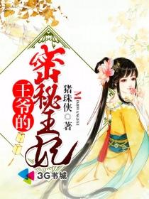 王爷的密秘王妃小说封面