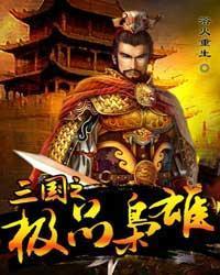 三国之极品枭雄小说封面