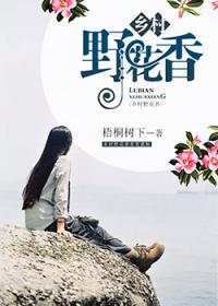乡村野花香小说封面