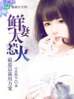 鲜妻太惹火:霸道总裁用力宠小说封面