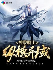 神殿骑士纵横异域小说封面