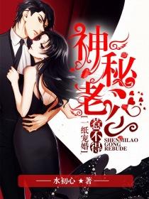 一纸宠婚:神秘老公欺上身小说封面