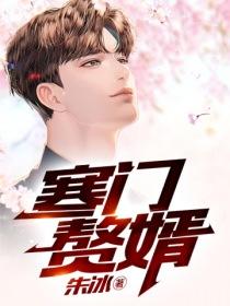 寒门赘婿小说封面
