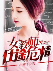 女教师仕途危情小说封面