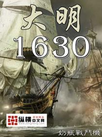 大明1630小说封面