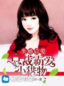 失婚后爱:总裁霸爱小猎物小说封面