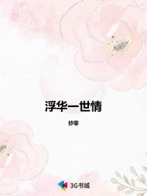 浮华一世情小说封面