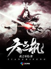 天之枫小说封面