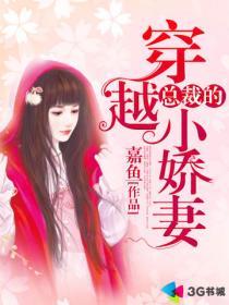 总裁的穿越小娇妻小说封面