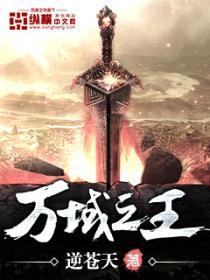 万域之王小说封面