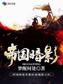 帝国暗影小说封面