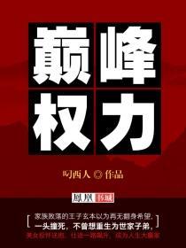 巅峰权力小说封面
