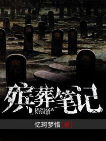 殡葬笔记小说封面
